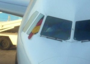 The pilot hung the German flag out the cockpit window